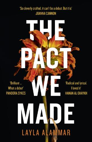 The Pact We Made (Paperback)