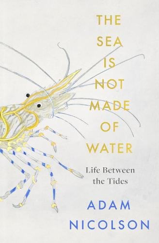 The Sea is Not Made of Water: Life Between the Tides (Hardback)