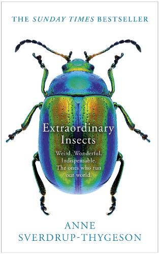 Extraordinary Insects: Weird. Wonderful. Indispensable. the Ones Who Run Our World. (Hardback)