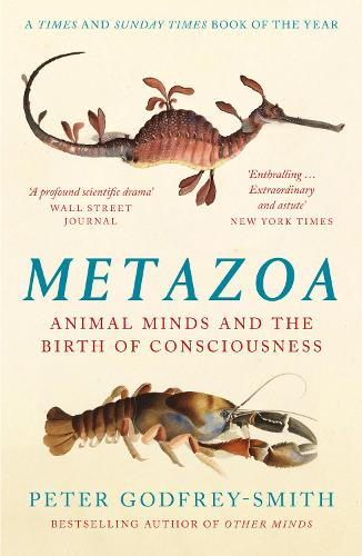 Metazoa: Animal Minds and the Birth of Consciousness (Paperback)