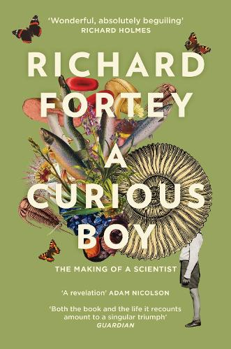 A Curious Boy: The Making of a Scientist (Paperback)
