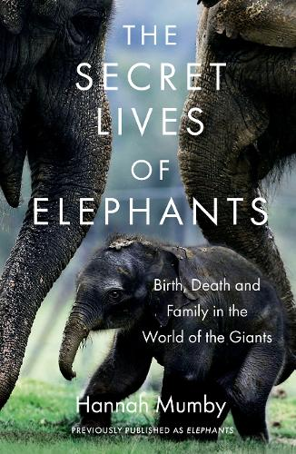 The Secret Lives of Elephants: Birth, Death and Family in the World of the Giants (Paperback)
