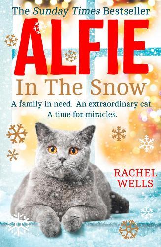Alfie in the Snow - Alfie series Book 5 (Paperback)