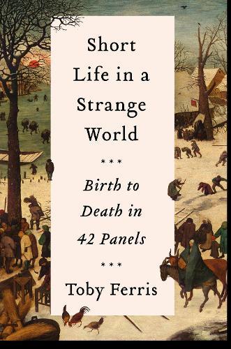 Short Life in a Strange World: Birth to Death in 42 Panels (Hardback)