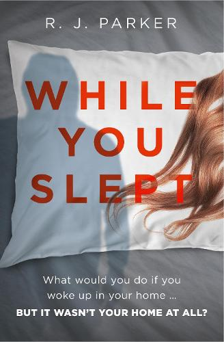 While You Slept (Paperback)
