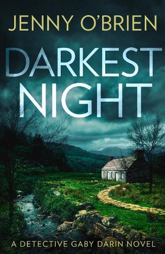 Darkest Night - Detective Gaby Darin Book 2 (Paperback)