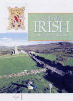 Encyclopedia of Irish History and Culture (Hardback)