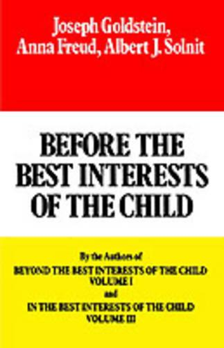 Before the Best Interests of the Child (Paperback)