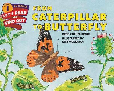 From Caterpillar to Butterfly (Hardback)