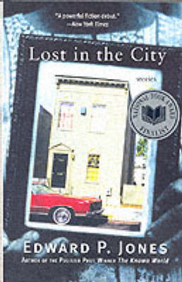 Lost in the City (Paperback)