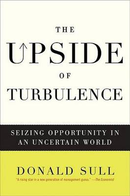 The Upside of Turbulence: Seizing Opportunity in an Uncertain World (Hardback)