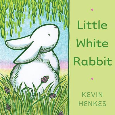 Little White Rabbit (Hardback)