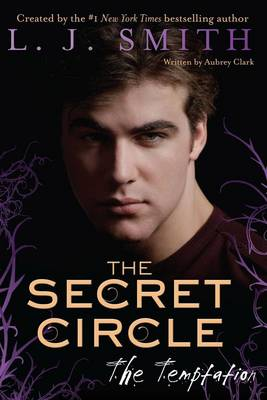 The Secret Circle: Temptation - Secret Circle 06 (Paperback)