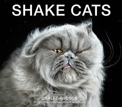 Shake Cats (Hardback)
