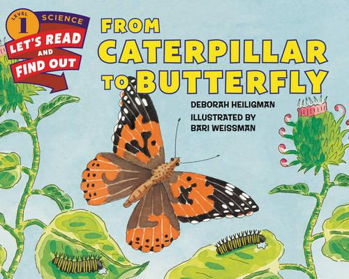 From Caterpillar To Butterfly - Let's Read and Find Out (Paperback)