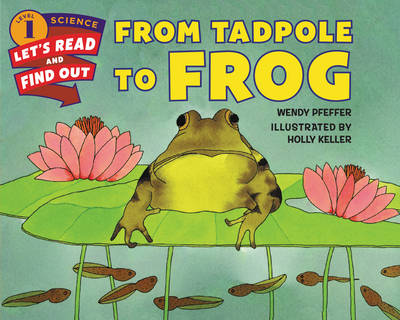From Tadpole to Frog - Lets-Read-and-Find-Out Science Stage 1 (Paperback)