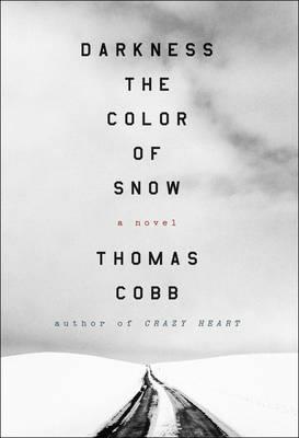 Darkness the Color of Snow: A Novel (Hardback)