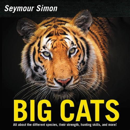 Big Cats: Revised Edition (Paperback)