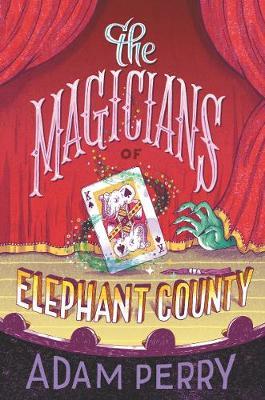 The Magicians of Elephant County (Hardback)