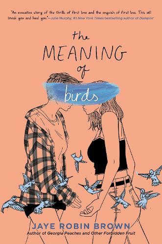 The Meaning of Birds (Hardback)