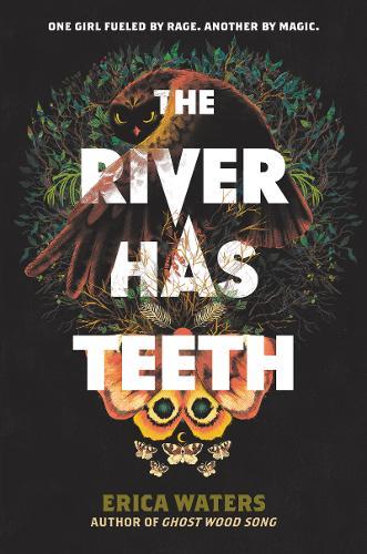 The River Has Teeth (Hardback)