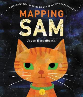 Mapping Sam (Paperback)