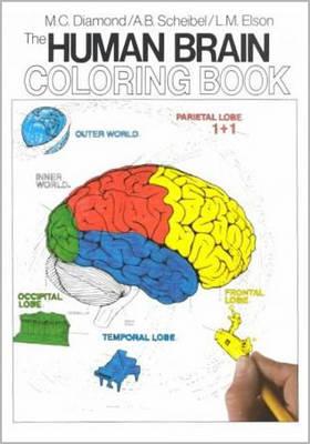 The Human Brain Coloring Book (Paperback)