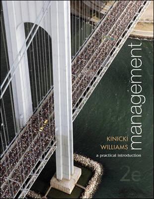 Management: A Practical Introduction (Paperback)