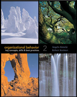 Organizational Behavior: Key Concepts, Skills and Best Practices (Paperback)