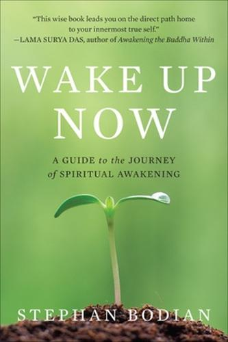 Wake Up Now (Paperback)