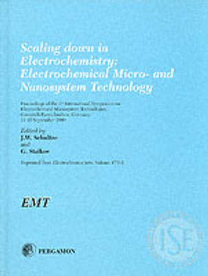Scaling down in Electrochemistry: Electrochemical Micro- and Nanosystem Technology (Hardback)