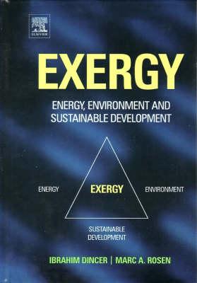 Exergy: Energy, Environment and Sustainable Development (Hardback)