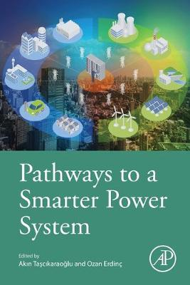 Pathways to a Smarter Power System (Paperback)