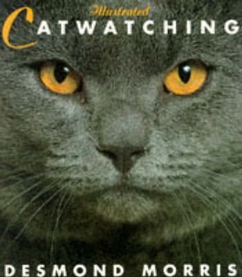 Illustrated Catwatching (Paperback)