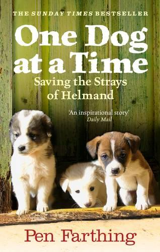 One Dog at a Time: An inspiring true story of saving the strays of Afghanistan (Paperback)
