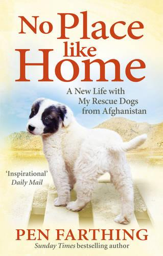 No Place Like Home: A New Beginning with the Dogs of Afghanistan (Paperback)