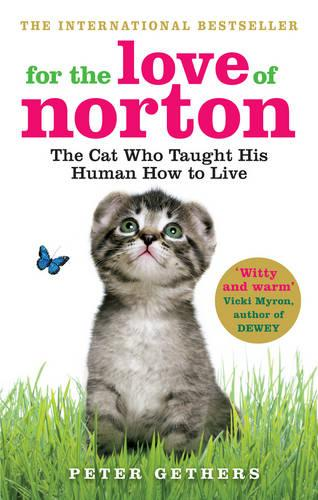 For the Love of Norton: The Cat who Taught his Human How to Live (Paperback)