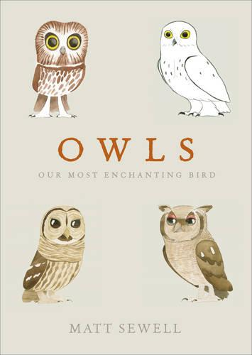 Owls: Our Most Enchanting Bird (Hardback)