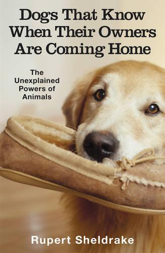 Dogs That Know When Their Owners Are Coming Home: And Other Unexplained Powers of Animals (Paperback)