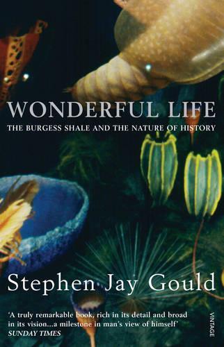 Wonderful Life (Paperback)