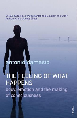 The Feeling Of What Happens (Paperback)