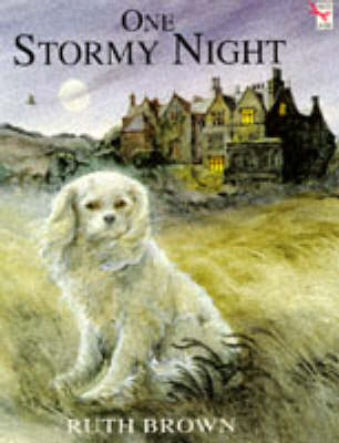 One Stormy Night - Red Fox picture books (Paperback)