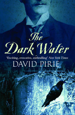 The Dark Water (Paperback)