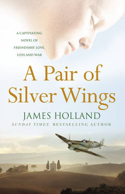 A Pair of Silver Wings (Paperback)