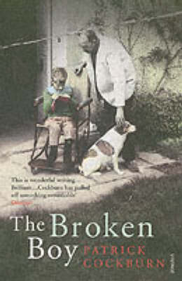 The Broken Boy (Paperback)
