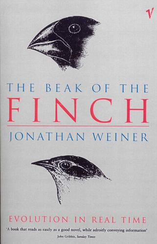 The Beak Of The Finch (Paperback)