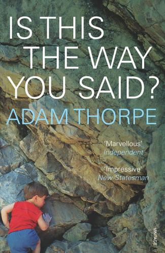 Is This The Way You Said? (Paperback)