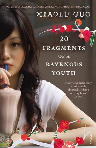 20 Fragments of a Ravenous Youth (Paperback)