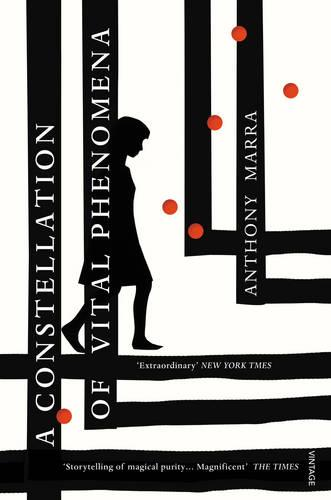 A Constellation of Vital Phenomena (Paperback)