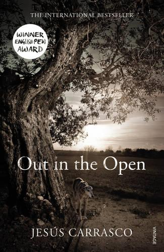 Out in the Open (Paperback)